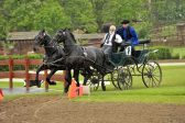 Lázár Equestrian Park